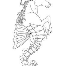 Coloriage HIPPOCAMPE - Coloriage - Coloriage HISTOIRE ET PAYS - Coloriage MYTHOLOGIE GRECQUE