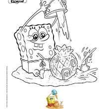 Coloriage Bob l'éponge : Coloriage BOB L'EPONGE à la plage