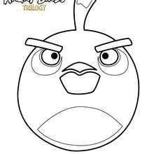 L'oiseau Bombe de ANGRY BIRDS - Coloriage - Coloriage ANGRY BIRDS