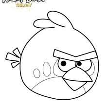 L'oiseau Rouge dans Angry Birds - Coloriage - Coloriage ANGRY BIRDS