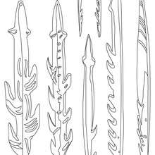 Coloriage : Armes et outils utilisés par les Homo Sapiens