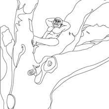 Coloriage : Australopithèque dans un arbre