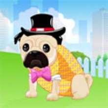 Jeu : Dog Dress Up