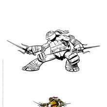 Coloriage RAPHAEL - Coloriage - Coloriage DESSINS ANIMES - Coloriage TORTUES NINJA