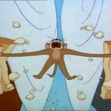 Le sandwich - Vidéos - Vidéos de DESSINS ANIMES - Vidéo TOM & JERRY