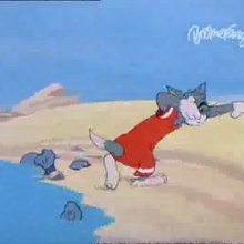 Dessin animé : Tom et Jerry et le crabe