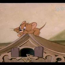 Dessin animé : TOM & JERRY : Vidéo 5