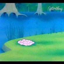 Daffy Duck : Vidéo 7 - Vidéos - Vidéos de DESSINS ANIMES - Vidéo DAFFY DUCK