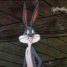 Bugsy et Mugsy - Vidéos - Vidéos de DESSINS ANIMES - Vidéos BUGS BUNNY
