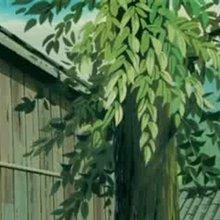 Episode 46 : Le pacte avec la mouette - Vidéos - Vidéos NILS HOLGERSSON au pays des oies sauvages