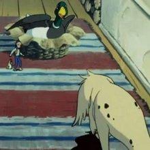 Episode 17 : Jarro sert d'appat - Vidéos - Vidéos NILS HOLGERSSON au pays des oies sauvages