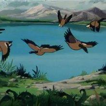 Episode 29 : Gorgo, l'aigle - Vidéos - Vidéos NILS HOLGERSSON au pays des oies sauvages