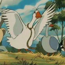 Episode 39 : L'adieu de Gorgo - Vidéos - Vidéos NILS HOLGERSSON au pays des oies sauvages