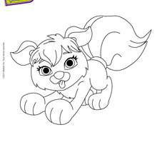 Coloriage du Chien de POLLY - Coloriage - Coloriage POLLY POCKET