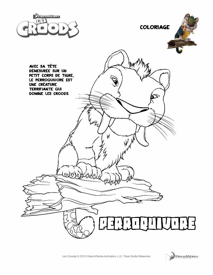 coloriage les croods coloriages coloriage à imprimer gratuit