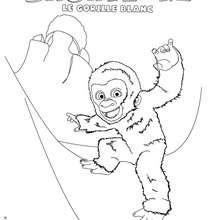 SNOWFLAKE à colorier - Coloriage - Coloriage FILMS POUR ENFANTS - Coloriage SNOWFLAKE LE GORILLE BLANC