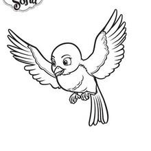 Coloriage Disney : Mia l'oiseau de Princesse Sofia