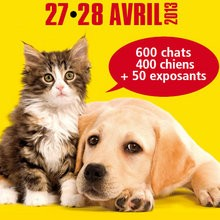 Scooby Doo et Gardfield au salon Chiens et Chats de Paris - Actualits