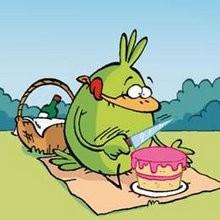 Pic Nic à la campagne - Lecture - BD pour enfant - Le Piou, l'oiseau le plus idiot de tous - Le Piou : IDIOT D'OISEAU
