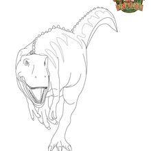 Coloriage tyrannosaure : LE ROI
