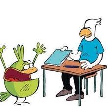 La dédicace - Lecture - BD pour enfant - Le Piou, l'oiseau le plus idiot de tous - Le Piou : IDIOT D'OISEAU