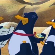A vue de bec - Vidéos - Vidéos JASPER LE PINGOUIN