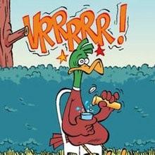 Mal de crâne l'oiseau le plus idiot de tous - Le Piou