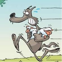 Sauve-mouton - Lecture - BD pour enfant - Le Piou, l'oiseau le plus idiot de tous - Le Piou : IDIOT D'OISEAU
