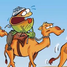 Sahara : Savoir gérer son eau - Lecture - BD pour enfant - Le Piou, l'oiseau le plus idiot de tous - Le Piou : WORLD TOUR