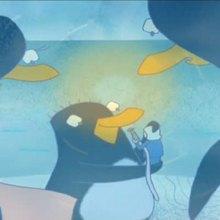 Glaces télécommandées - Vidéos - Vidéos JASPER LE PINGOUIN