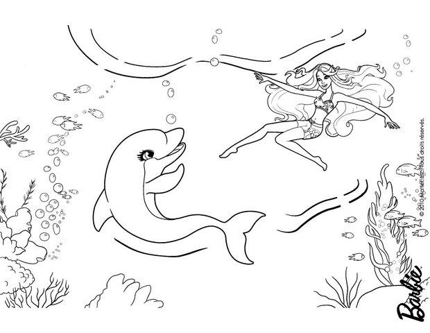 Coloriages zuma le dauphin - Coloriage de dauphin ...