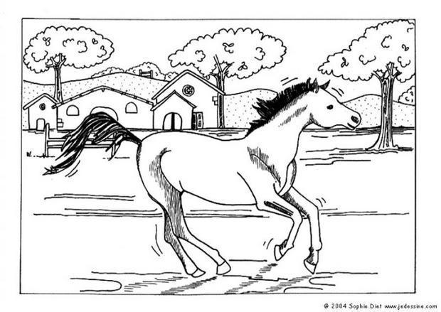 chevale coloring pages - photo#29