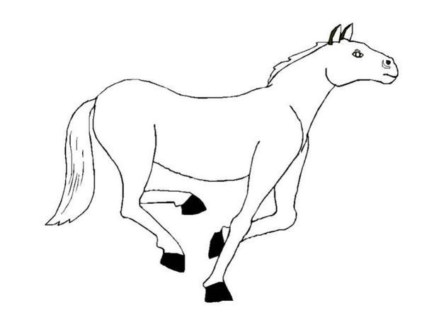 Coloriage : Cheval au galop
