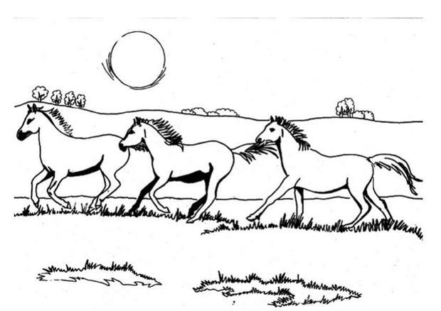 chevale coloring pages - photo#34