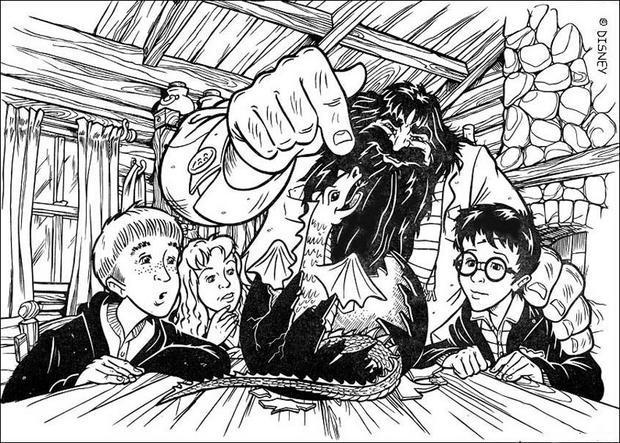 Coloriages Hagrid Et Le Bébé Dragon