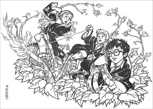 Coloriage En Ligne Harry Potter Gratuit.Coloriages Harry Potter Coloriages Coloriage A Imprimer Gratuit