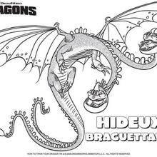 Coloriage : Le Dragon Hideux Braguettaure