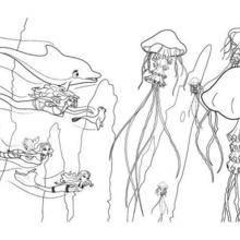 Coloriage Barbie : Les méduses géantes