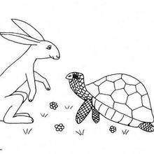 Coloriage du lièvre et la tortue