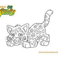 Coloriage Tigre de DIEGO