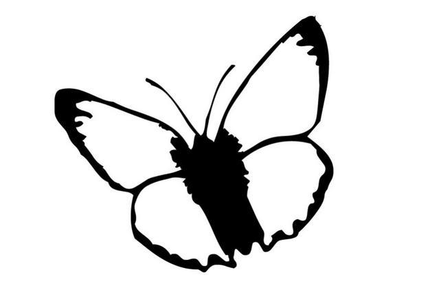 Coloriages coloriage d 39 un papillon n 1 - Coloriage en ligne papillon ...