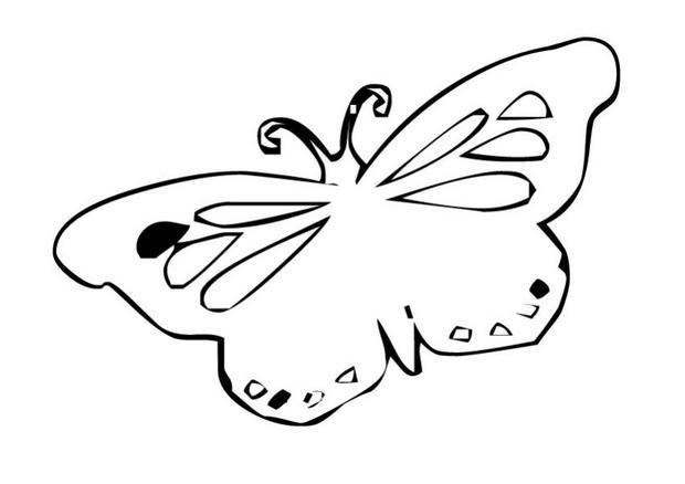 Coloriages coloriage d 39 un papillon n 12 - Coloriage d un papillon ...