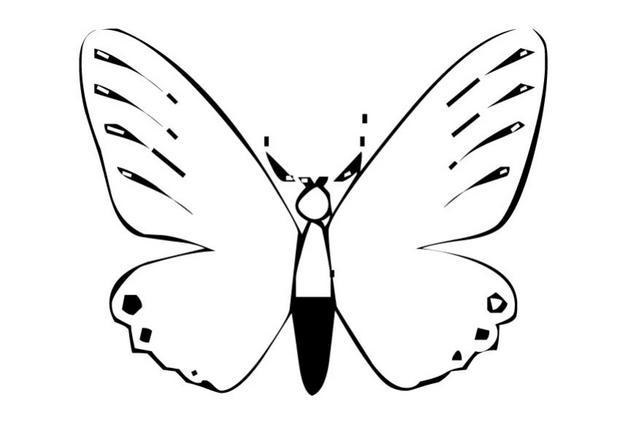 Coloriages coloriage d 39 un papillon n 13 - Coloriage en ligne papillon ...