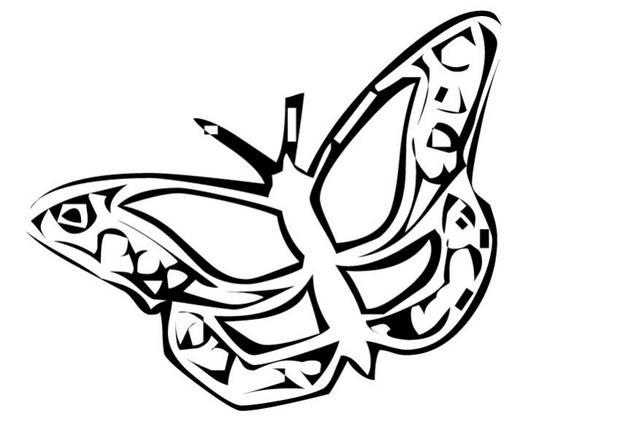 Coloriages coloriage d 39 un papillon n 15 - Coloriage d un papillon ...