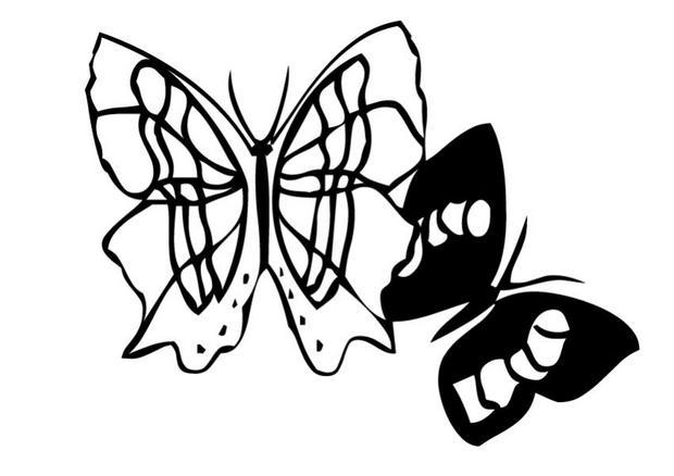 Coloriages coloriage d 39 un papillon n 2 - Coloriage d un papillon ...