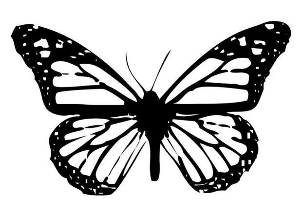 Coloriages coloriage d 39 un papillon n 3 - Coloriage en ligne papillon ...