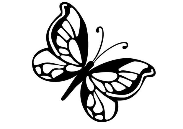 Coloriages coloriage d 39 un papillon n 8 - Coloriage en ligne papillon ...