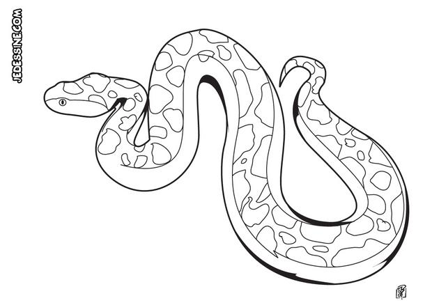 Coloriages coloriage d 39 un serpent totem - Dessin de serpent cobra ...