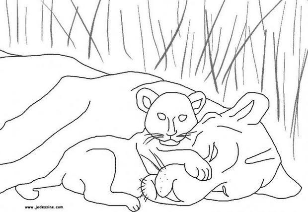 Coloriages Coloriage D Une Lionne Et Son Lionceau Fr Hellokids Com