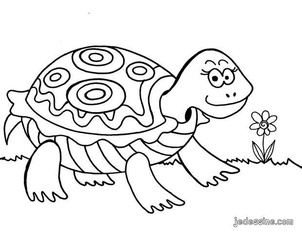 Coloriages coloriage d 39 une tortue - Tortue en dessin ...